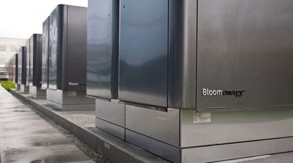 adobe-bloom-servers