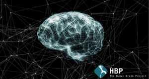 Naukowcy wiedzą, co zrobić, aby nasz mózg działał szybciej