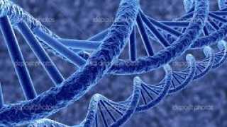 Nowa krajowa baza DNA zacznie działać już w tym roku