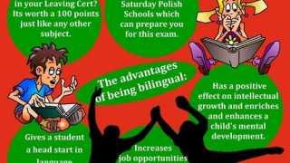 Kampania Polskiej Macierzy Szkolnej w Irlandii
